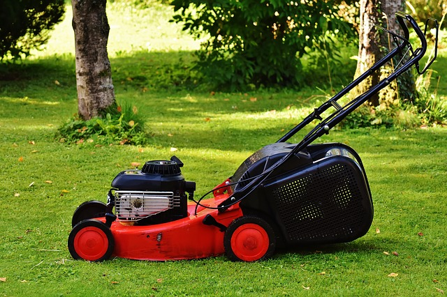 מכסחת דשא חשמלית